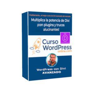 Curso Diseño WordPress con Divi AVANZADO - Gonzalo de la Campa